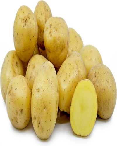 Potatos from rolpa thabang-रोल्पा थबाङ्को आलु