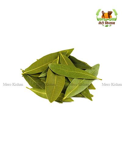 Bay Leaves (500 gm) - तेजपत्ता (५०० ग्राम)