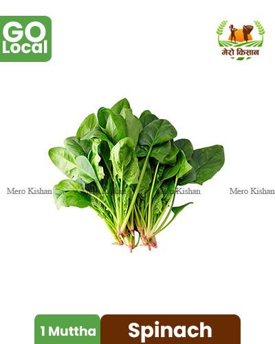 Spinach - पालुङ्गो