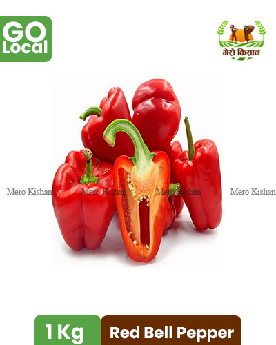 Red Bell Pepper - रेड बेल पेपर (1 Kg)