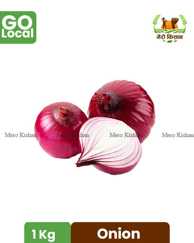 Onion - प्याज
