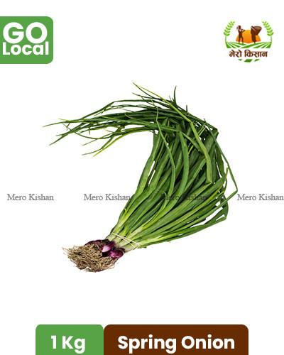 Spring Onion - हरियो प्याज