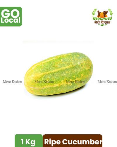 Ripe Cucumber - पाकेको काक्रो