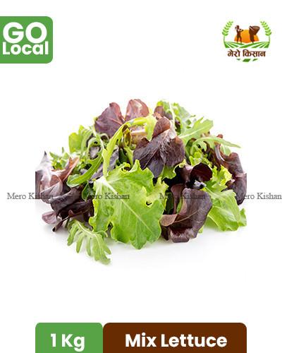 Mix lettuce - मिक्स सलाद पत्ता