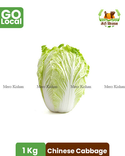 Chinese Cabbage (1 Kg)