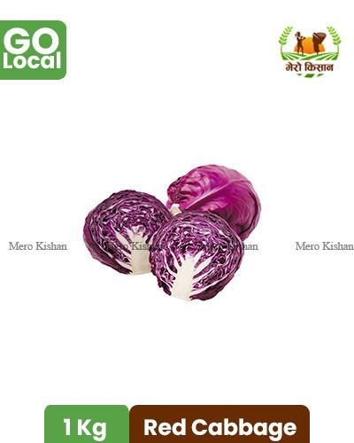 Red Cabbage - राताे बन्दा