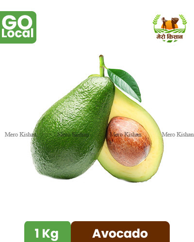 Avocado (Imported) - एभोगाडो (1 Kg)