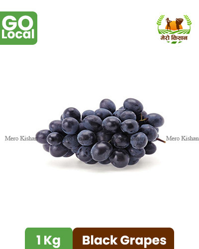 Black Grapes - कालाे अङ्गुर